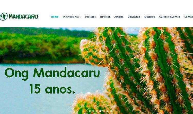 Conecte-se a Ong Mandacaru