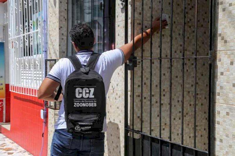 Circuitos Carnavalescos de bairro recebem ação combate Aedes aegypti.
