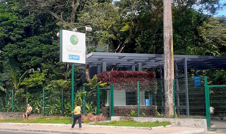 Vocês conhecem o Jardim Botânico de Salvador?